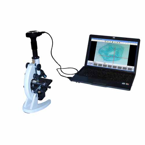DBMEM1300-44 digital biological microscope