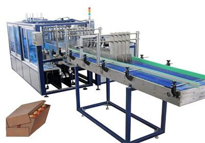 Carton Wrapping Machine