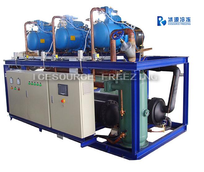 Compressor Unit and Refrigeration System
