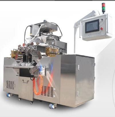 RJWJ-200 soft capsule produce equipment
