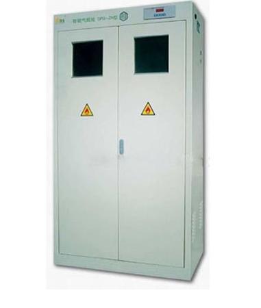 All Steel Gas Cylinder Storage Cabinet