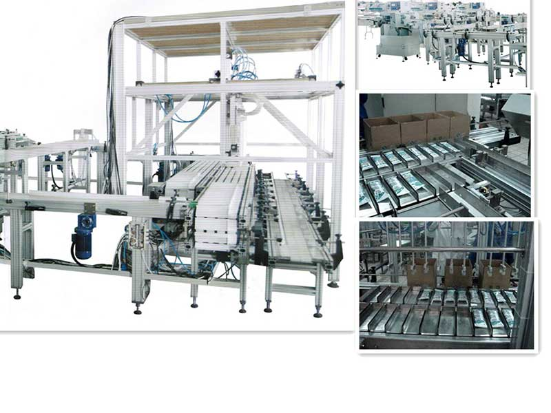 Full automatic ice cream cartoning machine